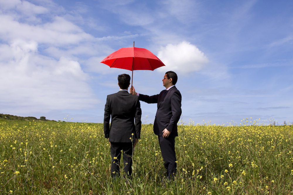 commercial umbrella insurance in Vidalia STATE | Reed Insurance